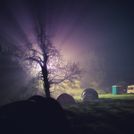 Main Camping area in the night mist